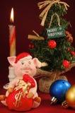 Un cerdo y un NY Foto de archivo libre de regalías
