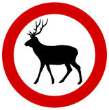 Un cerf commun dans un poteau de signalisation Photographie stock libre de droits