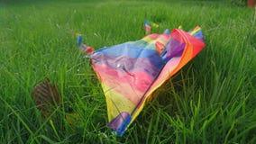 Un cerf-volant d'arc-en-ciel a jeté se situer dans l'herbe Image stock