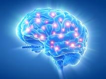 Un cerveau actif illustration libre de droits