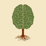 Un cerveau s'élevant sous forme d'arbre Images stock
