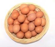 Un cestino delle uova Fotografie Stock