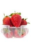 Un cestito plástico claro de fresas Fotos de archivo libres de regalías