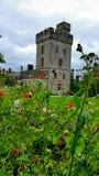 Un château dans la distance Image libre de droits