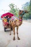Un chameau a tiré le taxi photos libres de droits