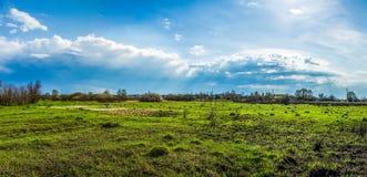 Un champ d'herbe sous les nuages brillants dans le ciel bleu Images libres de droits