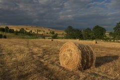 Un champ de blé moissonné avec des balles d'une paille de rond Images stock