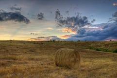 Un champ de blé moissonné avec des balles d'une paille de rond Image stock