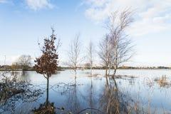 Un champ inondé. images libres de droits