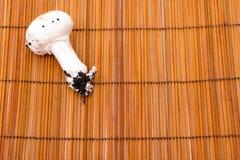 Un champignon Images stock