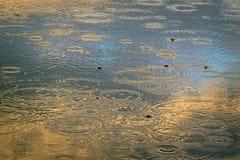 Un charco con los círculos en la superficie azul del agua, pintada con un sol poniente en tonos de oro Imagen de archivo libre de regalías