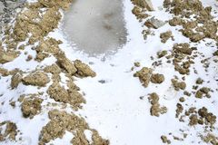 Un charco congelado en un suelo de arcilla, cubierto con nieve fotografía de archivo libre de regalías