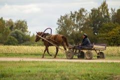 Un chariot avec un cheval dans un village russe photographie stock libre de droits
