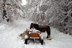 Un chariot de cheval en hiver Photos libres de droits