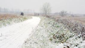 Un chariot de cheval sur la route d'hiver banque de vidéos