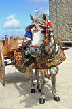 Un chariot traditionnel de Pony And en Sicile Images stock