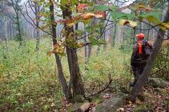 Un chasseur dans les bois Photographie stock libre de droits
