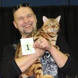Un chat et un propriétaire du Bengale de gagnant. images libres de droits