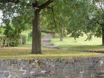 Un chemin avec des escaliers sous un grand chêne en parc Image libre de droits