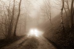 Un chemin boueux par un bois, un jour déprimé et brumeux d'hivers Avec un grunge, rétro éditez images libres de droits