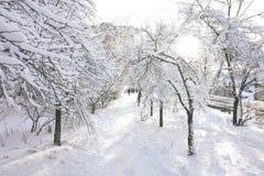 Un chemin couvert de neige, dont le long les gens marchent images libres de droits