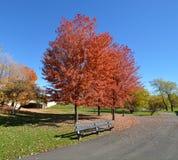 Un chemin d'automne Photos libres de droits