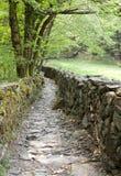 Un chemin dans les bois, dei Giganti de Parco Marmitte photo libre de droits