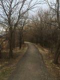 Un chemin dans les bois par les arbres trouvent ce que vous cherchez Photographie stock libre de droits