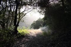 Chemin de montagne au crépuscule photographie stock