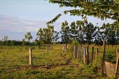 Un chemin de saleté à travers un champ sur un ranch vénézuélien encadré par le barbelé et les barrières électriques avec des mont photographie stock libre de droits