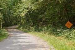 Un chemin de terre d'enroulement dans les bois Photo stock