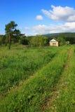 Un chemin de terre envahi avec l'herbe Images stock