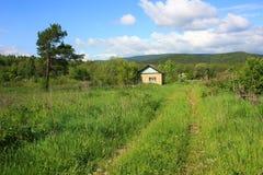 Un chemin de terre envahi avec le chemin de terre de grassA à la maison, envahie avec l'herbe Image libre de droits