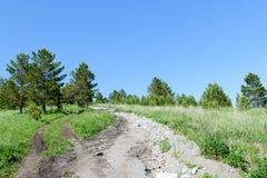 Un chemin de terre sur une colline dans une forêt ensoleillée d'été Photos libres de droits