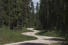 Un chemin de terre tordu photos libres de droits