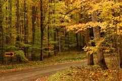 Un chemin en automne Photos libres de droits