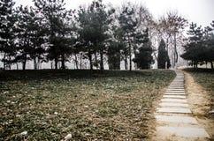 Un chemin en pierre photos stock