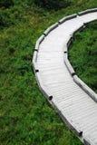 Un chemin incurvé Image stock