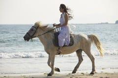 Un cheval d'équitation de femme sur la plage Photo stock