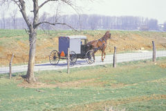Un cheval et un chariot dans une communauté d'exploitation agricole amish Photos stock