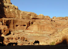 Un cheval silhouetté se tient au beau milieu de PETRA en dehors de Wadi Musa Jordan image libre de droits