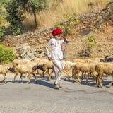 Un chevrier de tribal de Rajasthani Photo libre de droits