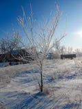 Un chiaro giorno di inverno, un paesaggio rurale con una copertura rustica del giardino fotografia stock