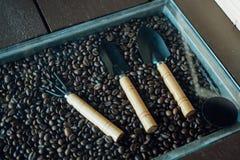 Un chicco di caffè e dello strumento Immagine Stock Libera da Diritti