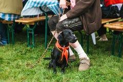 Un chien à côté du propriétaire à un festival traditionnel en Allemagne Amitié entre l'homme et l'animal Photo libre de droits