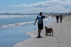 Un chien et un garçon Images libres de droits