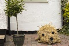 Un chiffre de hérisson de paille montré chez hauts Wych Scarecrow Festival - Essex annuels traditionnels, R-U photographie stock