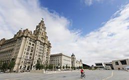 Un ciclista monta por el edificio real del hígado Fotografía de archivo libre de regalías