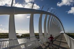 Un ciclo de la chica joven a lo largo de Te Rewa Rewa Bridge, uno del icono de la señal en la calzada costera en un día soleado a Imágenes de archivo libres de regalías