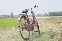 Un ciclo delle signore rosa è stato trovato nel supporto nel villaggio dell'India fotografia stock libera da diritti